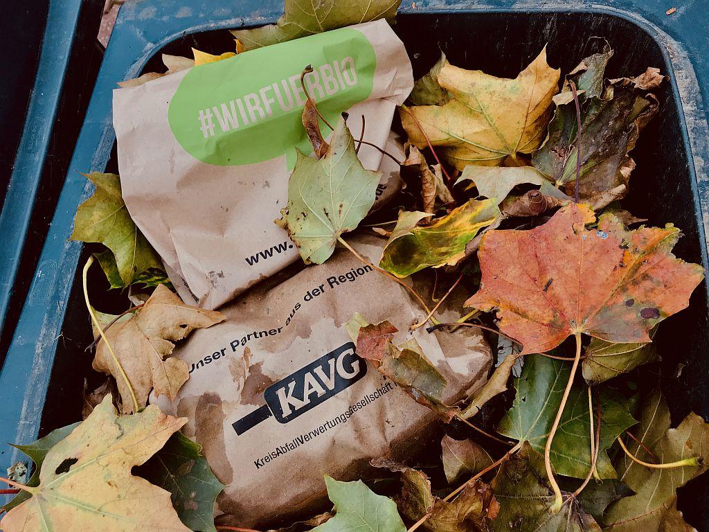 Tipps zur Biotonne im Herbst- im Blog von #WIRFUERBIO