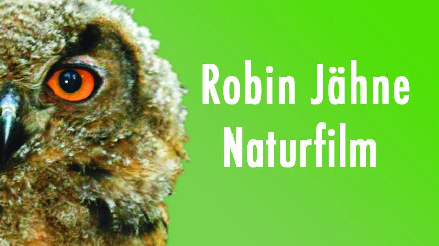 Schauen Sie hinter die Kulissen eines preisgekrönten Tierfilmers