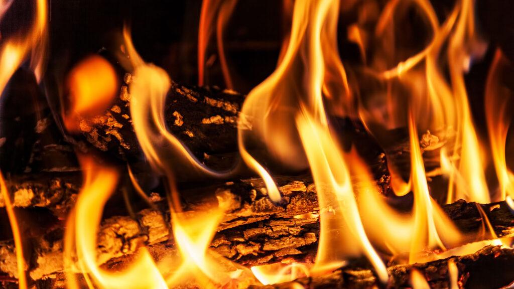 Brennholzversteigerung