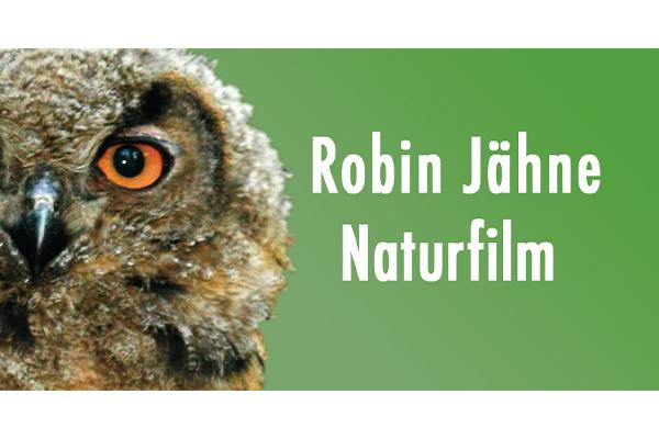 www.robinjaehne.de